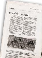 70_hive063_v2.jpg